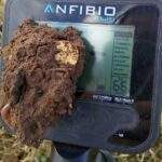 anfibio-multi-nahodki-00028